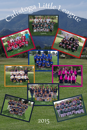 2015 Calistoga Little League