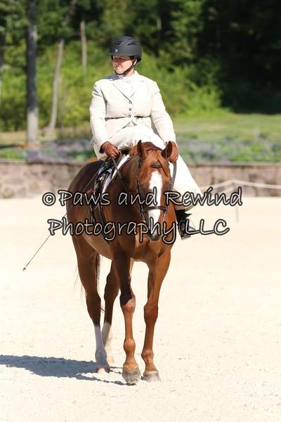 Equitation and Pleasure
