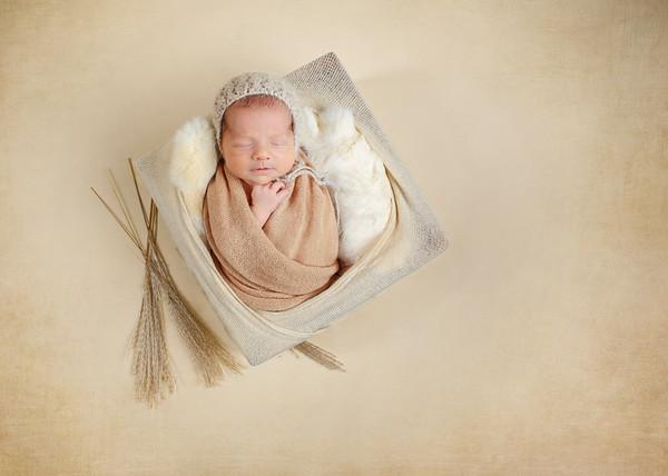 Roth Newborn