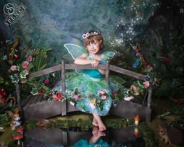 The Fairy Experience - June 2015
