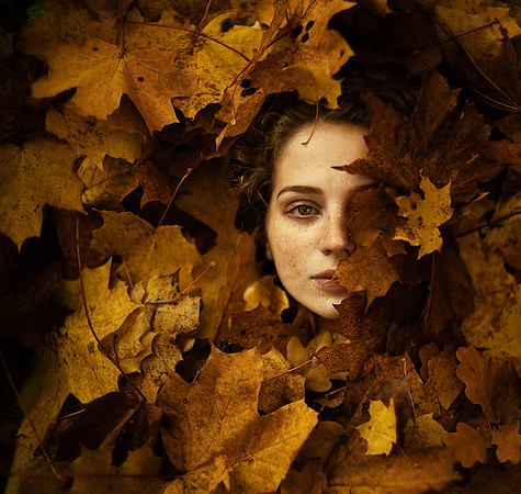 Autumn Inside Series