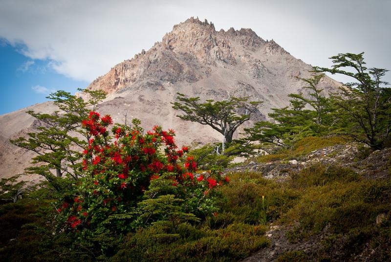 El Chalten 201112 Laguna de los Tres Hike (89).jpg