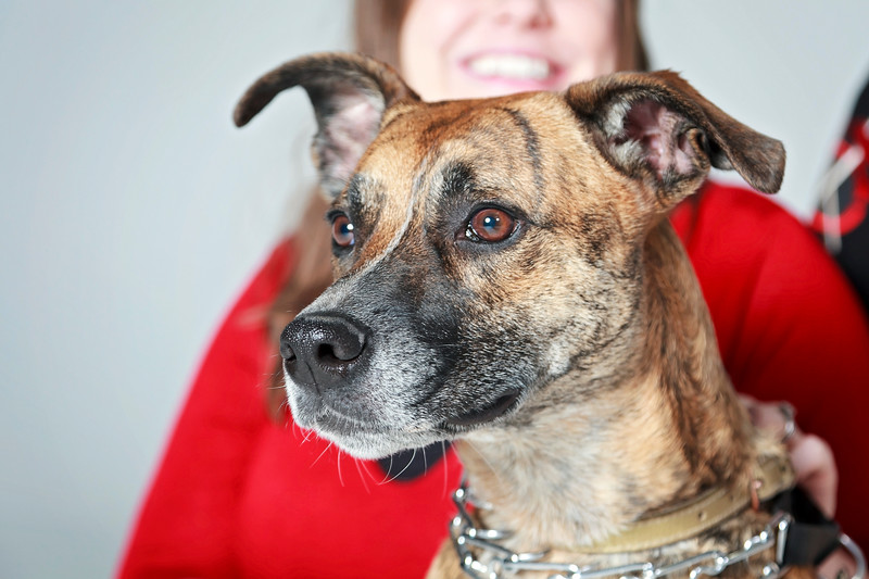 Picture Pawfect - 19 marca 2017 - 344-1.jpg