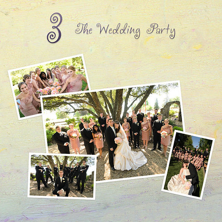 3 The Wedding Party