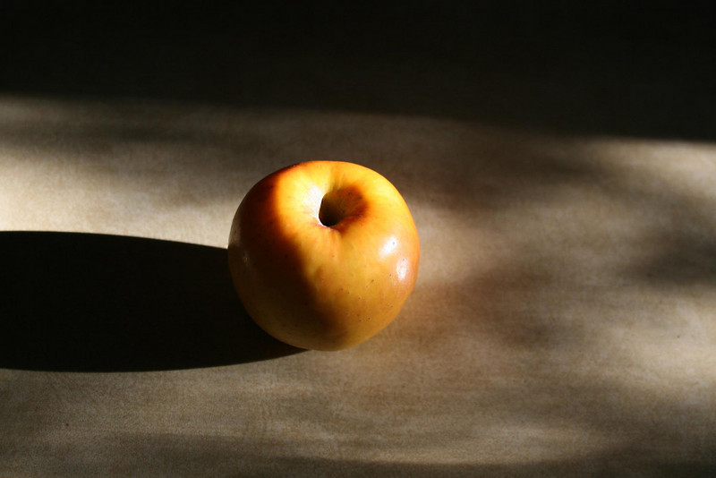 the apple and me 015.jpg
