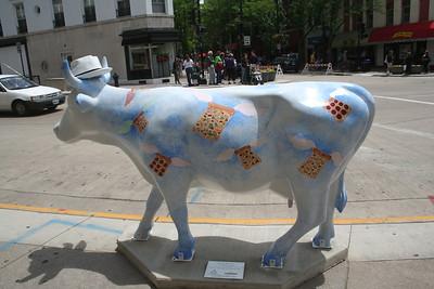 Madison Cows