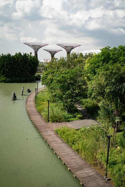 Singapore-19-076.jpg