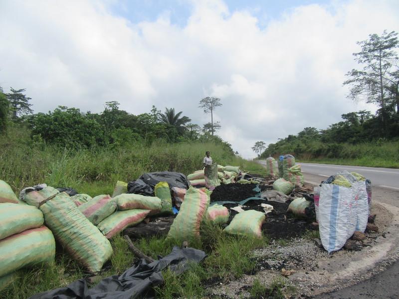 012_En route. Entre Abidjan et Aniassué. Déforestation. Charbons de Bois.JPG
