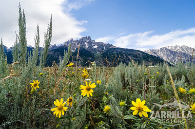 Grand Teton National Park (Wyoming)