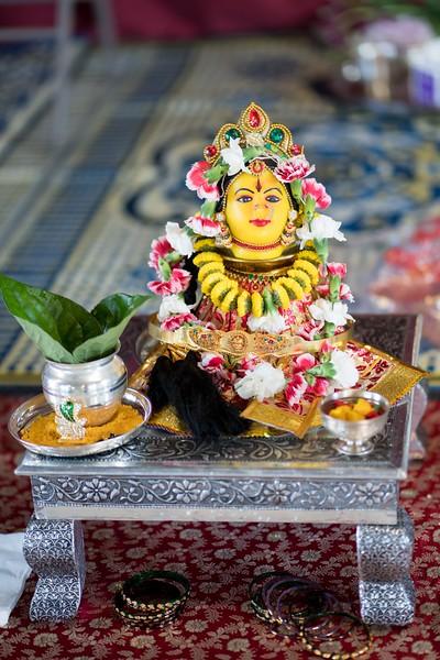 Erin_Harsha_Hindu_Wedding-7.jpg
