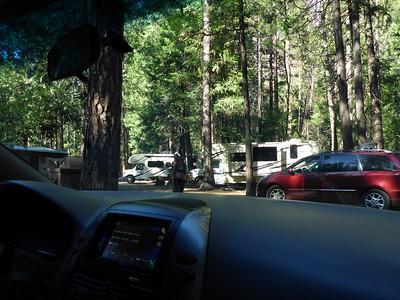 Camp Yosemite