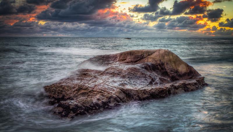 Coastal_Tribolet-37.jpg