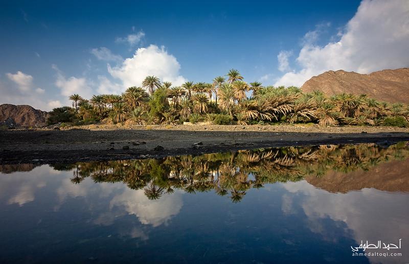 Oman (156).jpg
