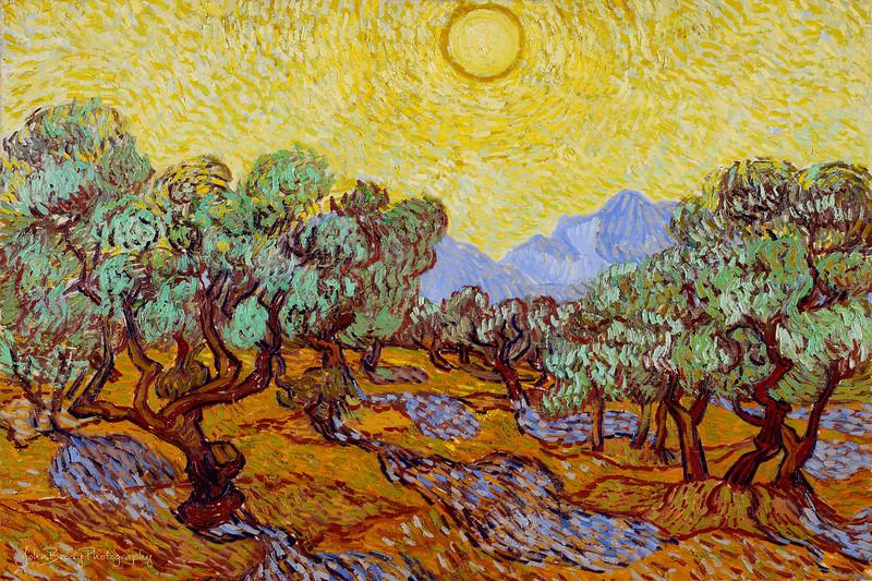 Vincent_van_Gogh_Olive_Trees-tch3pptwrpTch4SunTch6vibsatbrtcnt-1pt5-TinyCropForPrint.jpg