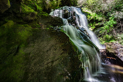 Metcalf Creek
