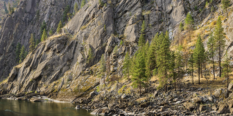 Salmon River Morning - Cliff and Trees.jpg