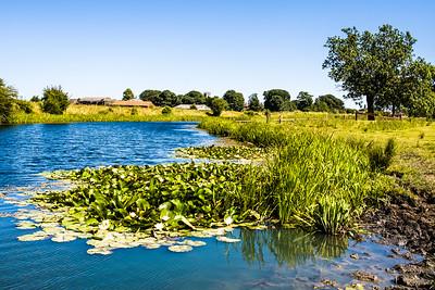 Long Pond Barnby Dun