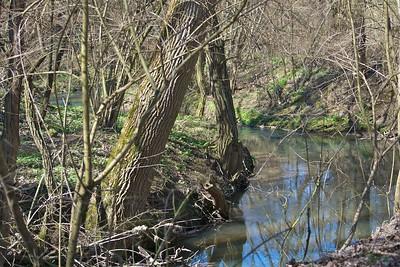 Germany - Weiler zum Stein Nature Reserve