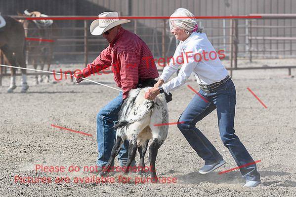 Cardston Equine Centre Day 2