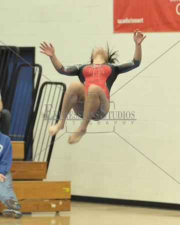 Tipp City Gymnastics Candids 2016