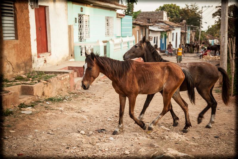 Cuba-Trinidad-IMG_1331.jpg