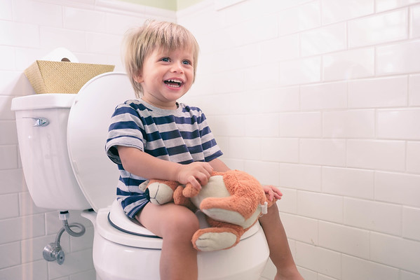 Bro Potty Training