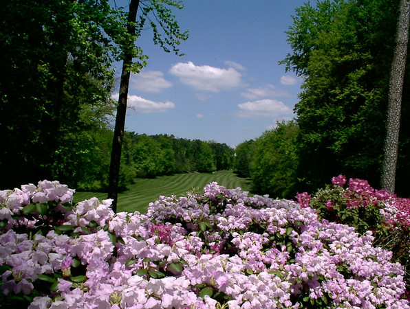 Photographs of Woodlawn Golf Course in Germany Ebook