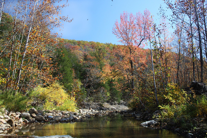 Buffalo River near Erbie
