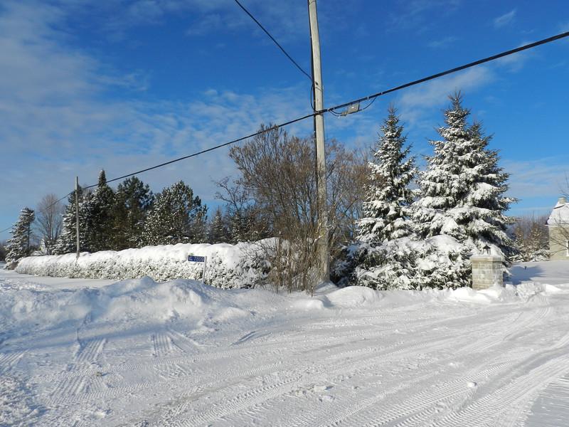 fantastic snow-7154.jpg