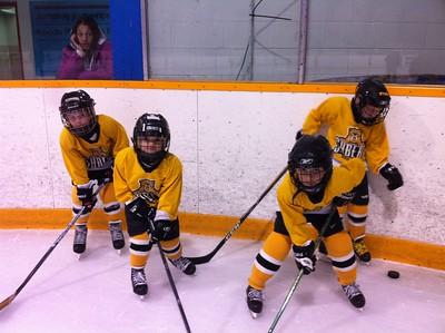 20130313-Logan Hockey