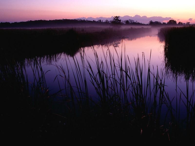 Sunset at Loxahatchee National Wildlife Refuge, Florida.jpg