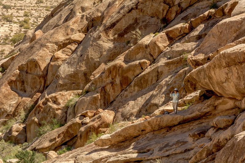 Hiker near El Camino Del Diablo #2