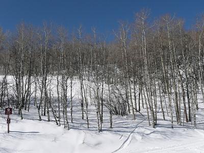 Beaver Creek Ski Trip with Friends