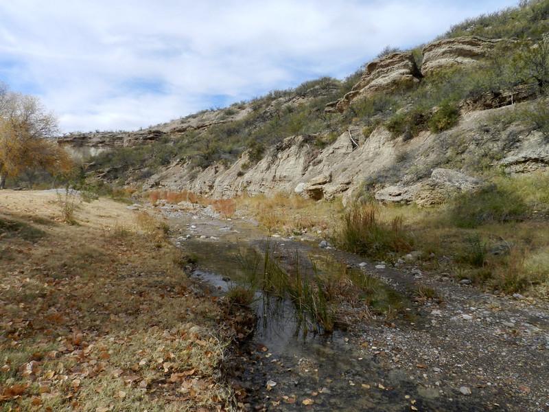 Chinati Hot Springs creek3.jpg