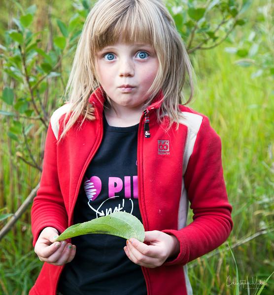 20110827_vestmannaejar_6594.jpg