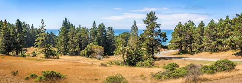 Panoramic Meadow & Ocean Views