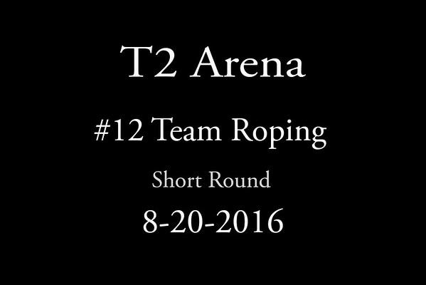 8-20-2016 #12  Roping  'Short Round'