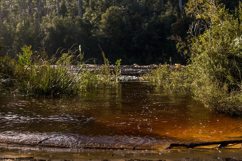 Tasmania-61.jpg