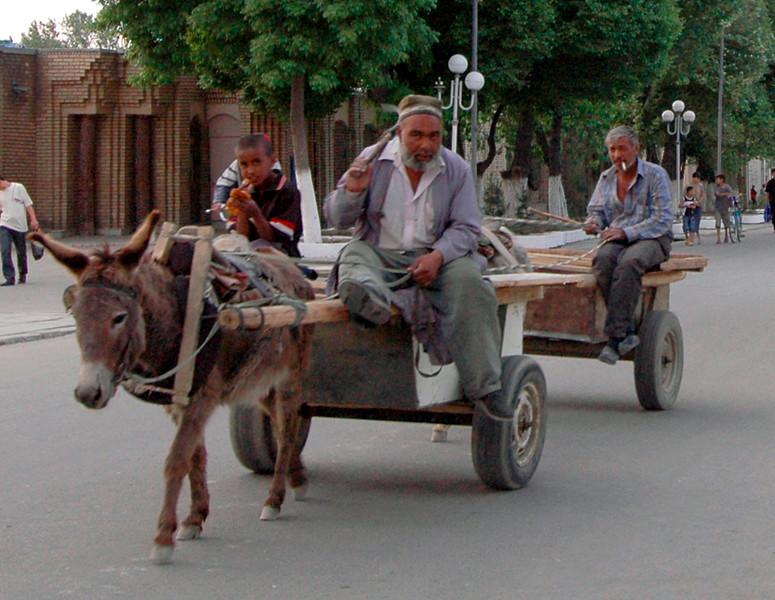050425 3437 Uzbekistan - Samarkand - Environs horse and cart _D _E _H _N ~E ~L.JPG