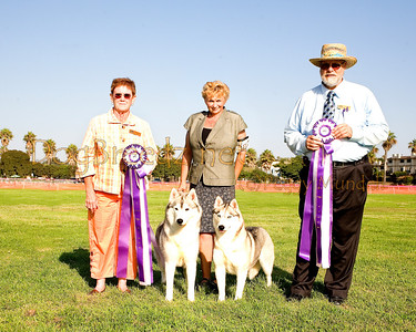 Bettering The Breed - September 2013 (Saturday)