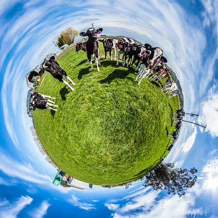 Dairy Farm Waimate Tiny Planet Photos
