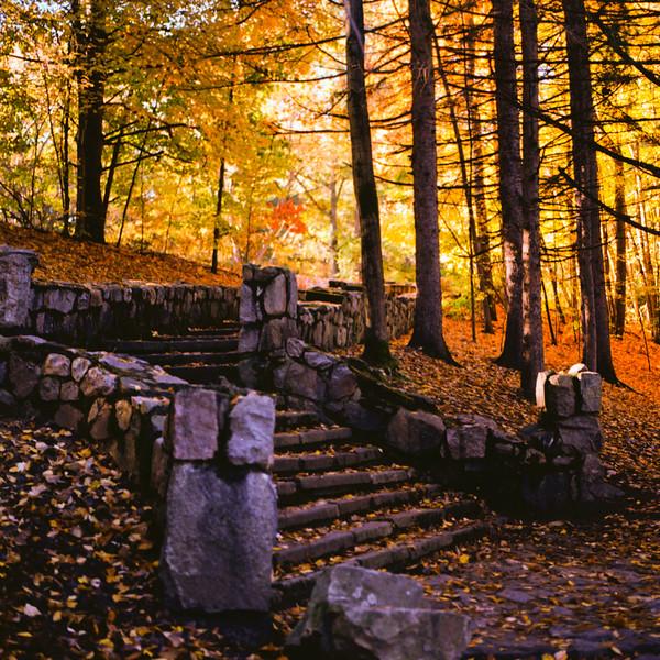 Autumn Hike 120 Film-00019.jpg