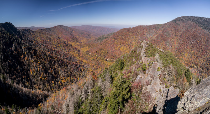 The colors of the Great Smokies