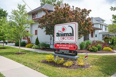 Animal Doctors 2021