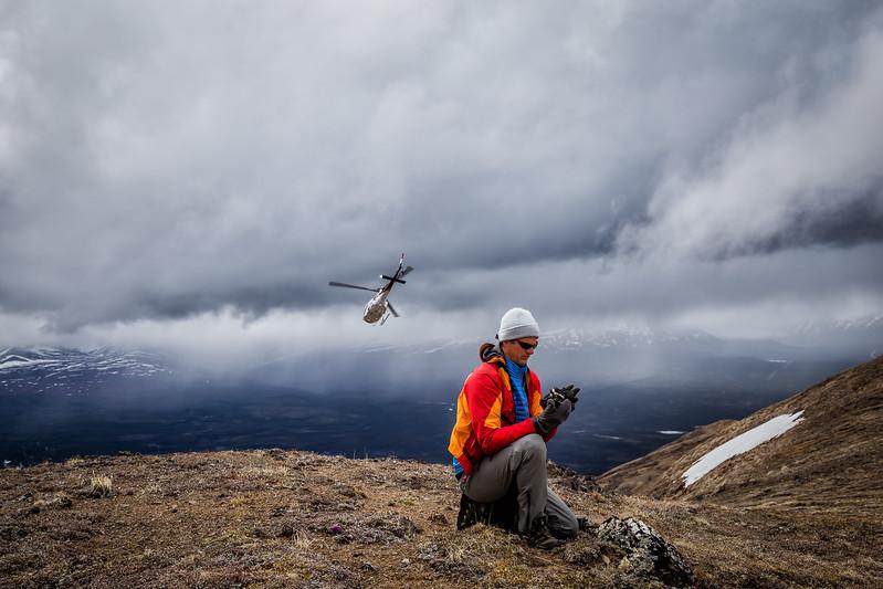Heli-hiking Denali State Park Alaska