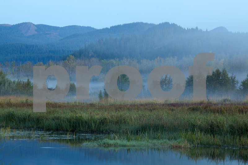 Trout Lake mist sunrise 5138.jpg