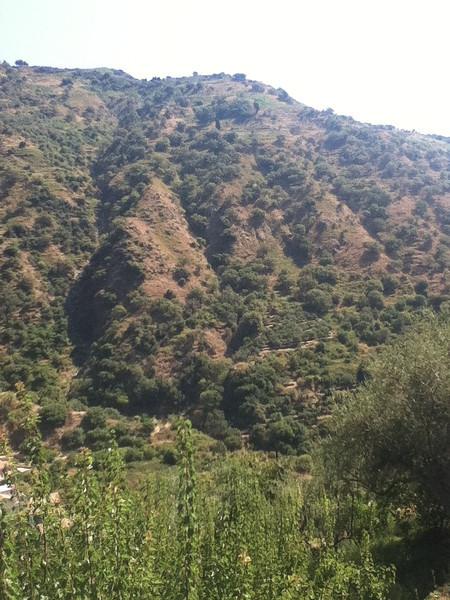 20110820-Ginka-Sicily-20110820--IMG_1582--0780.jpg