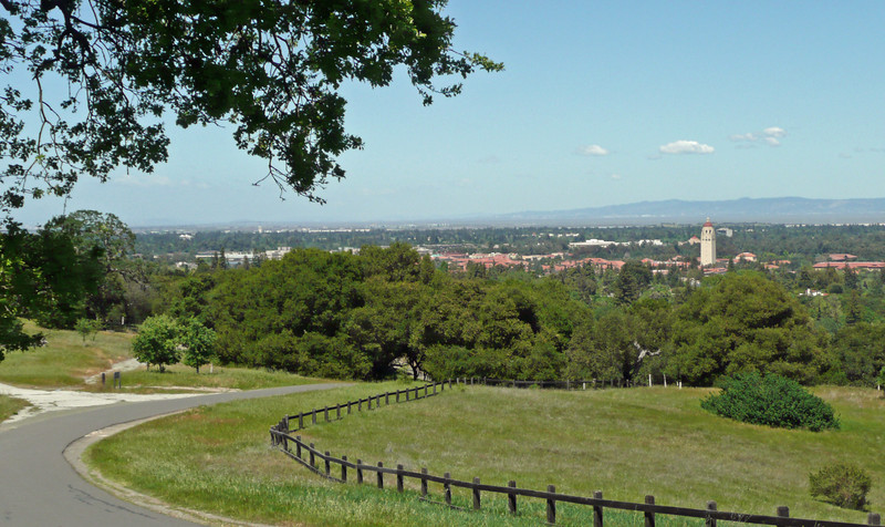 Overlooking Stanford