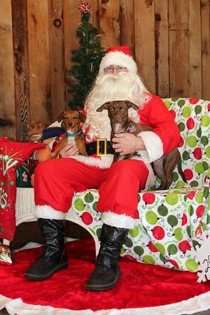 Santa Paws 2012