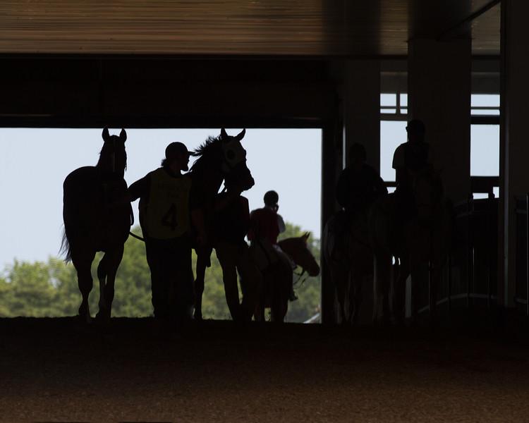 monmouth park horse crash 3507--5.jpg